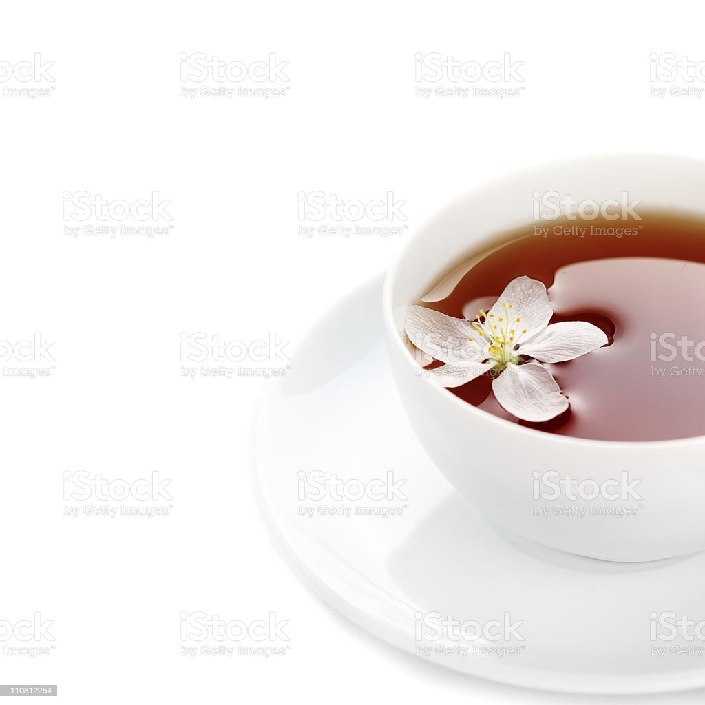 cup of tea  on a white isolated background stock photo