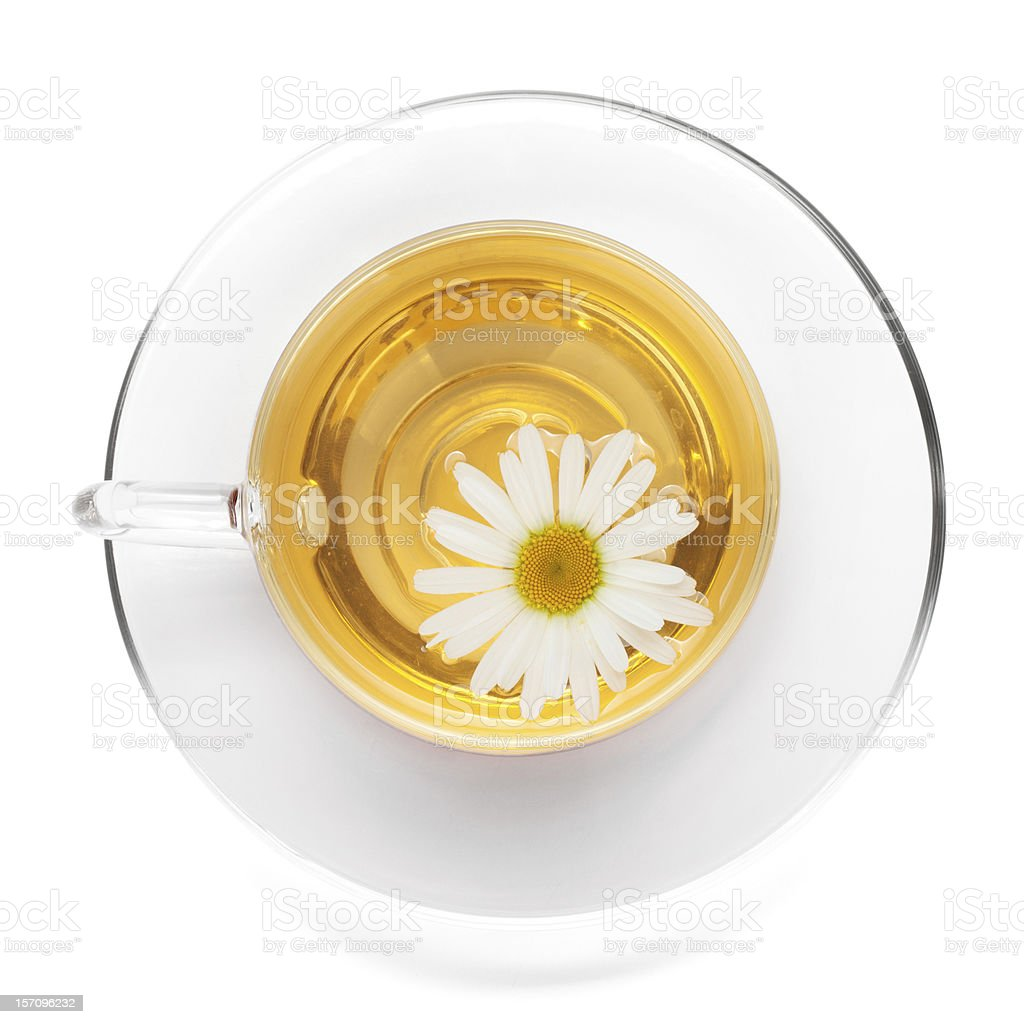 Cup of tea with chamomile flower royalty-free stock photo