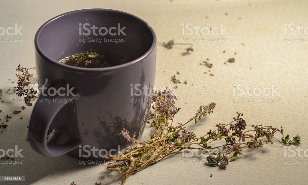 cup of tea with fragrant thyme stock photo