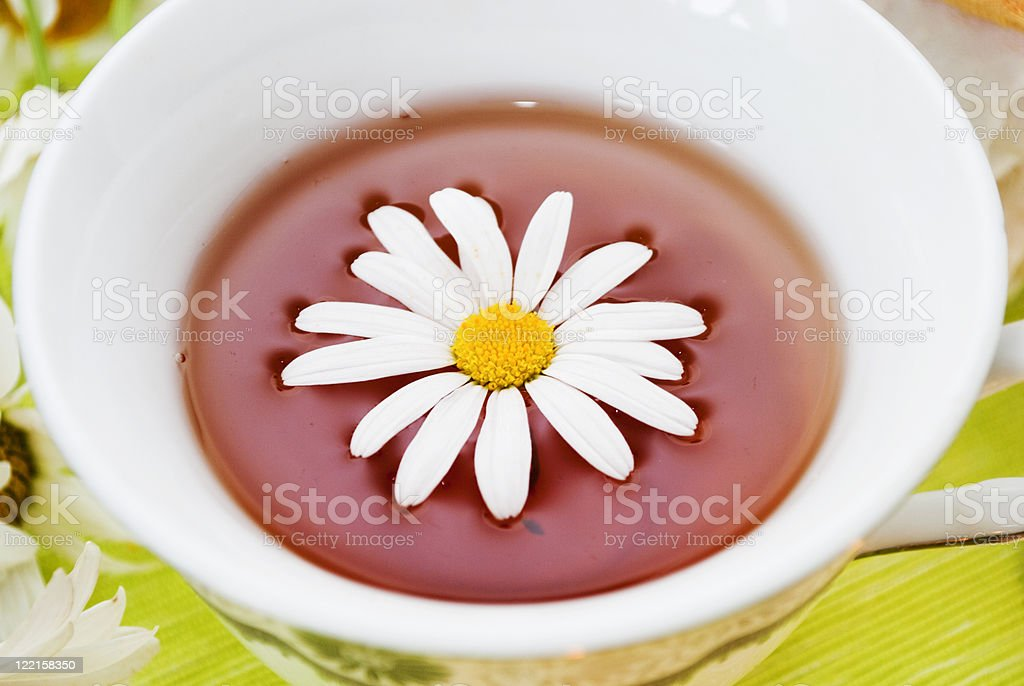 cup tea and camomile royalty-free stock photo