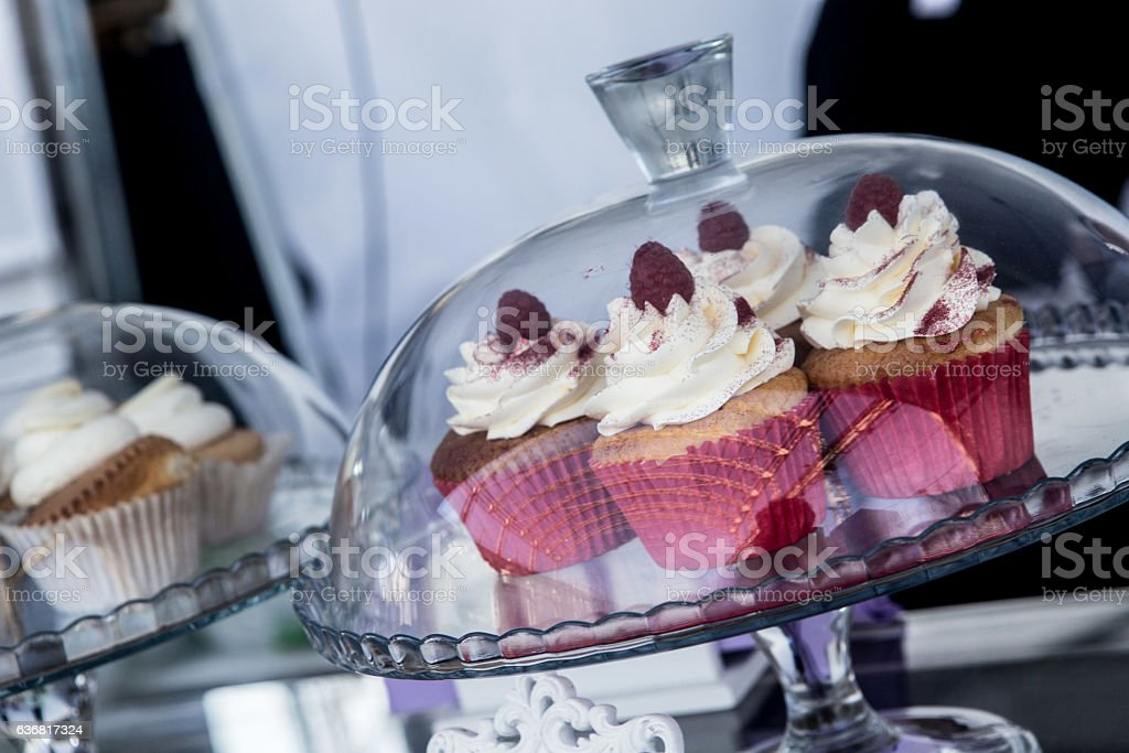 Cupcake display in a case on a truck food stock photo