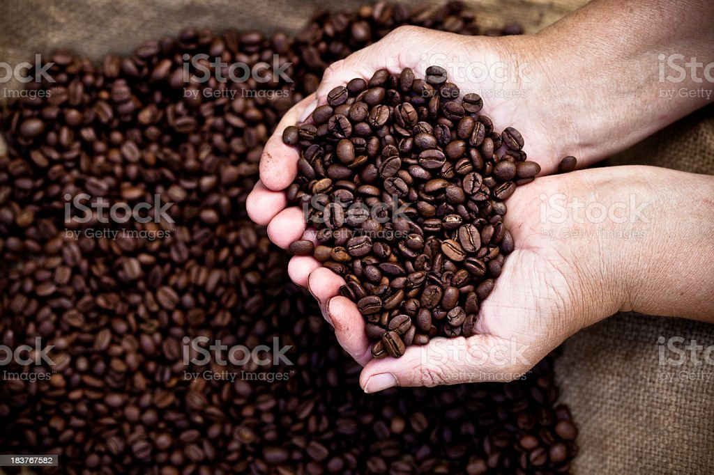 Cupped hands holding coffee beans royalty-free stock photo