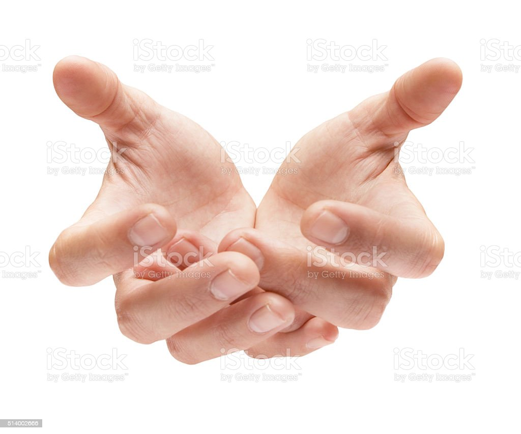 cupped hands on white - Stock Image stock photo