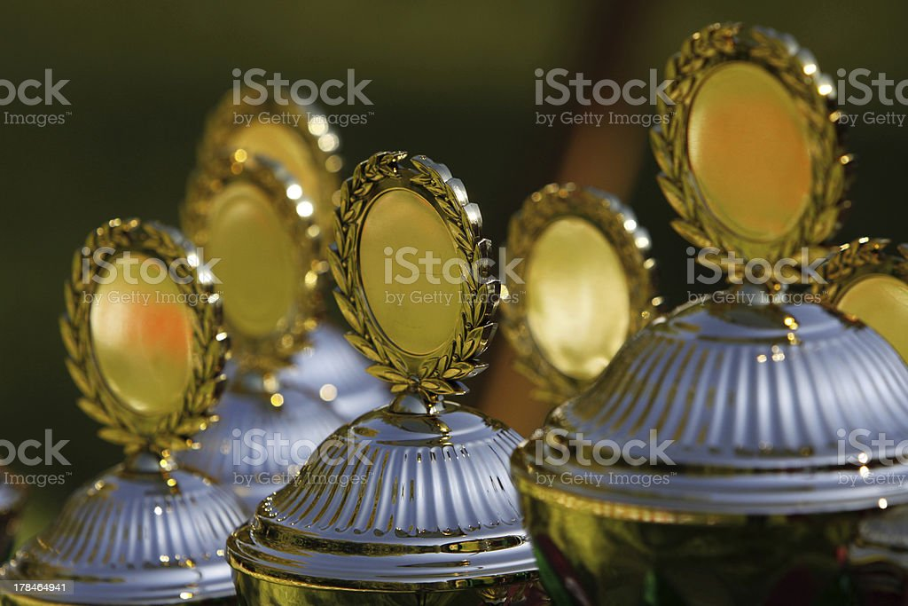 Cups for a Dog Race royalty-free stock photo