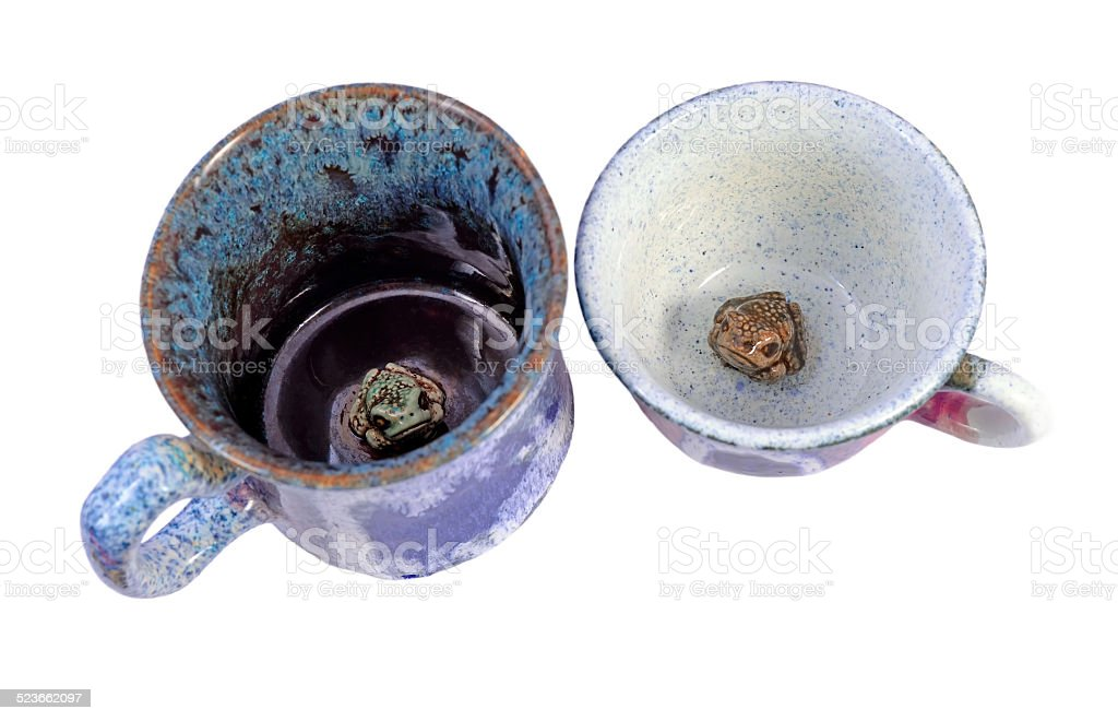 Cups with a frogs on the bottom stock photo