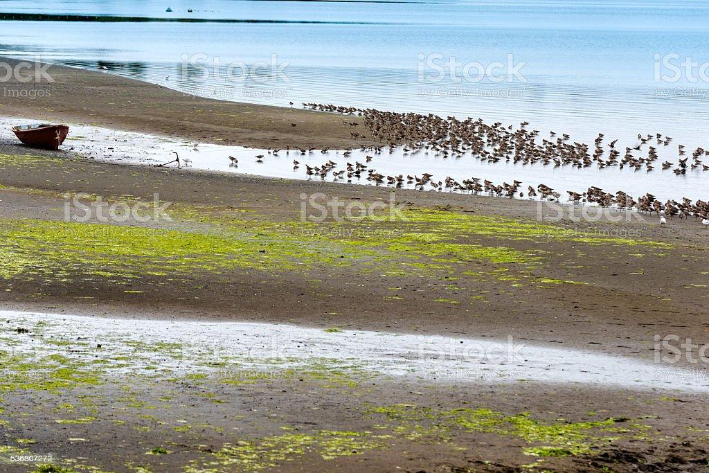 Curaco de Velez stock photo