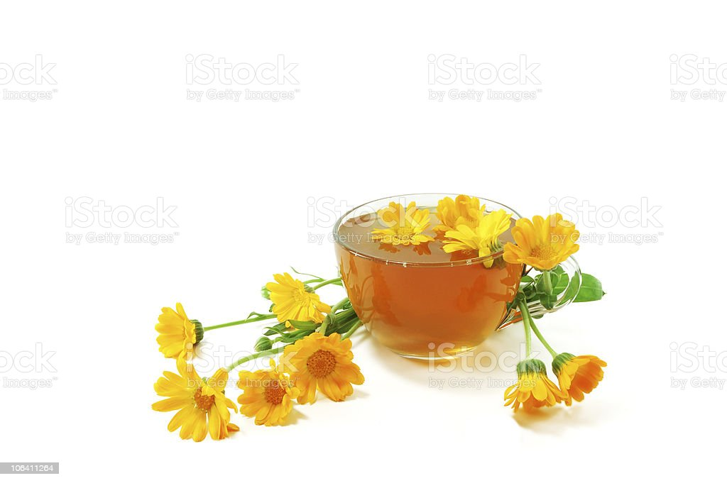 Curative tea with calendula royalty-free stock photo