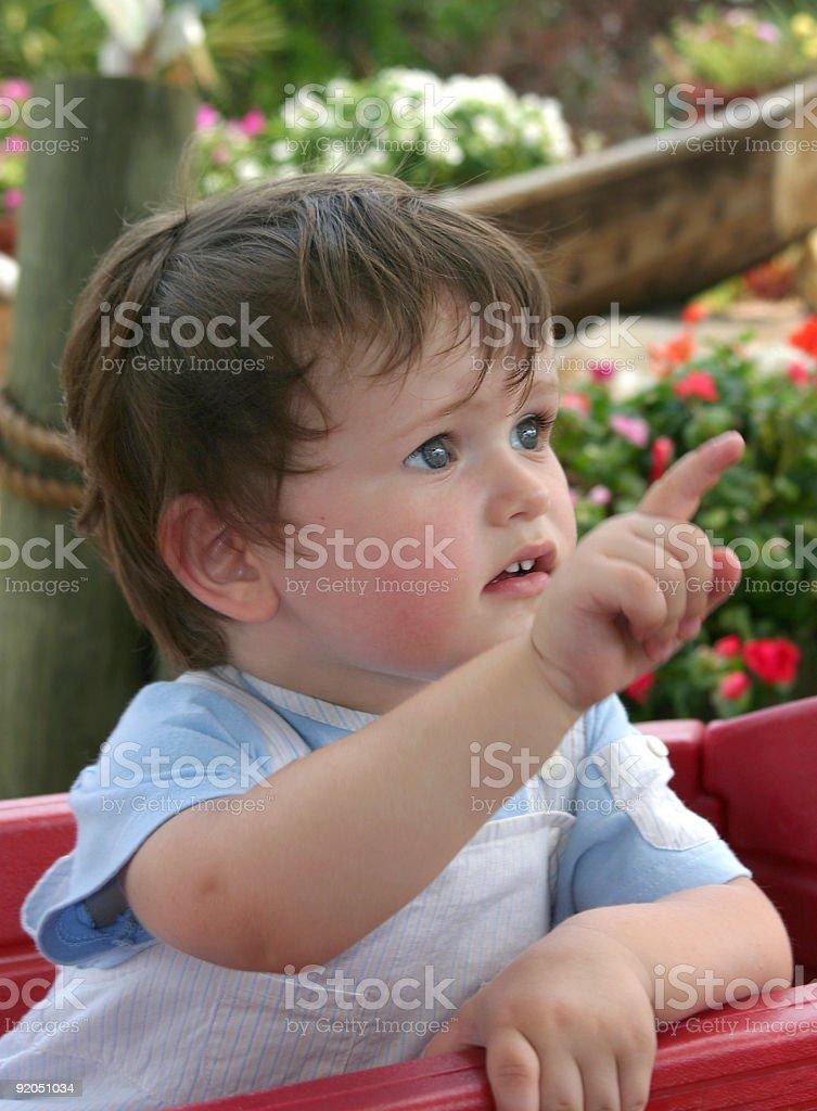 Curieux petit garçon photo libre de droits