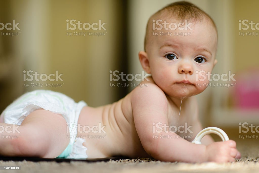Curious Baby In A Nursery stock photo