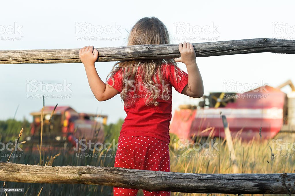 Curious farm girl looking at working red combine harvesters stock photo
