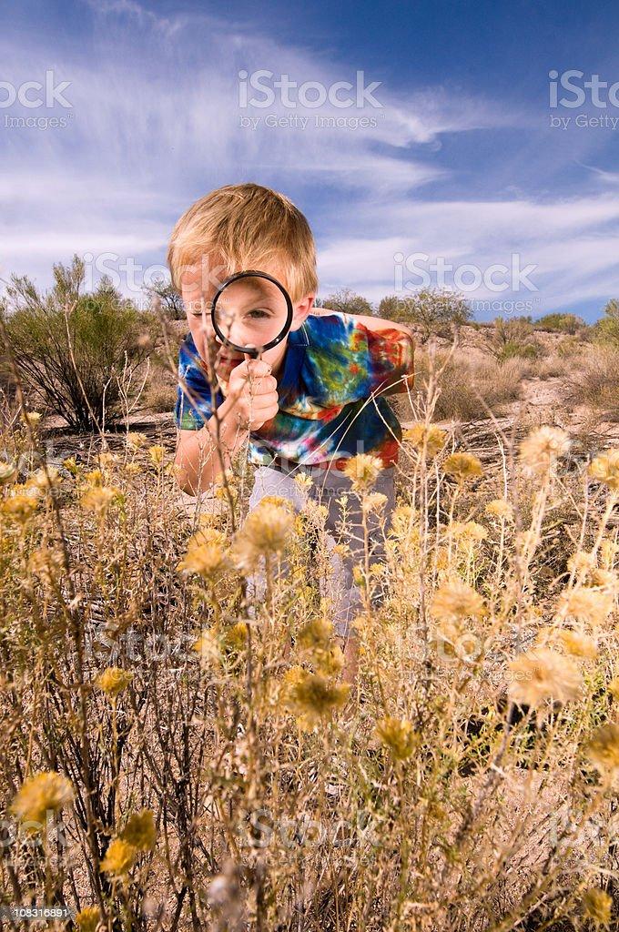 Curious Little Explorer stock photo