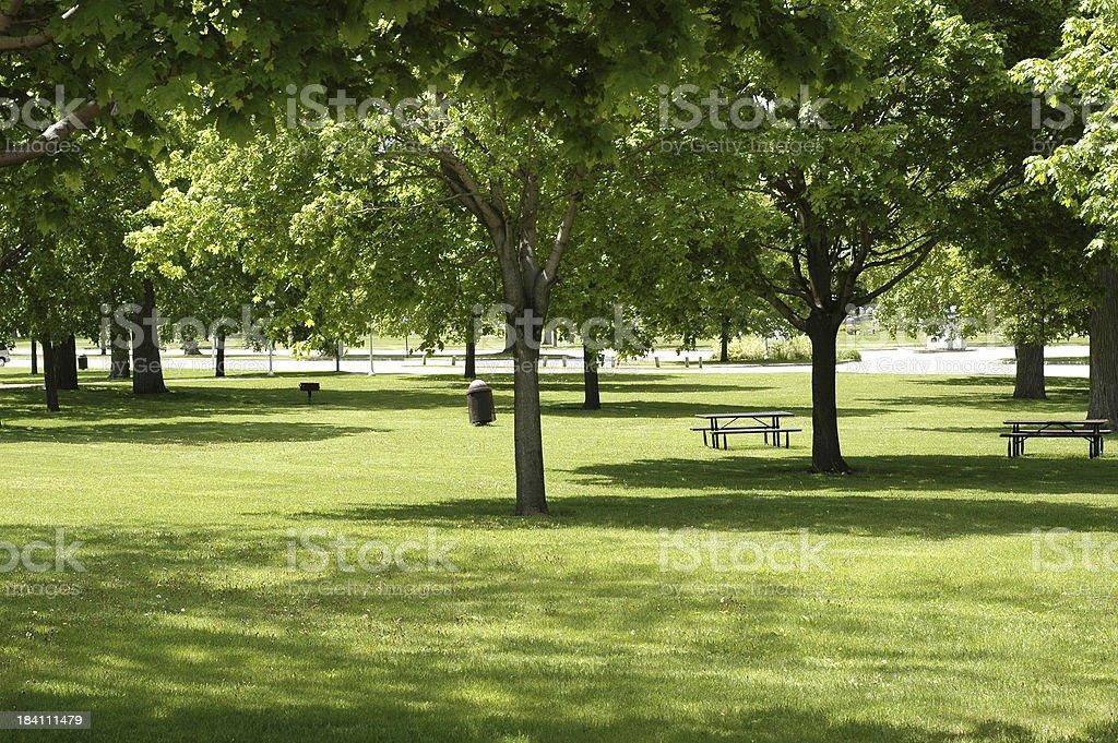 Curiously Empty Park royalty-free stock photo