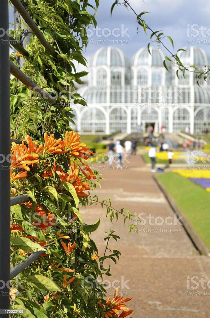 Curitiba royalty-free stock photo