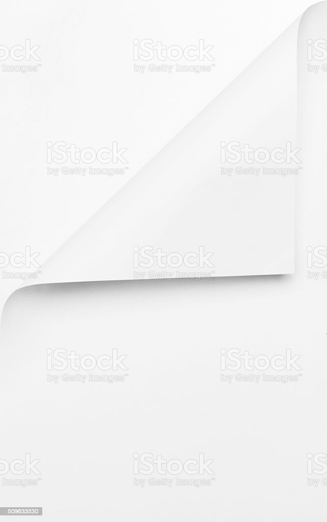 Curled Paper Vertical stock photo