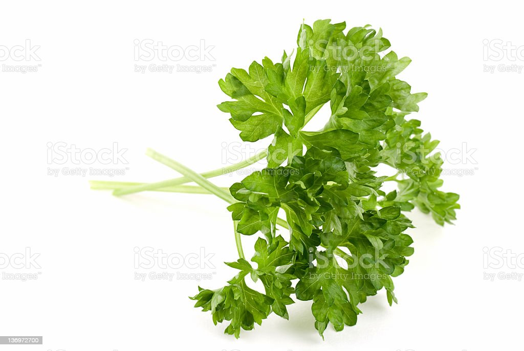 Curled Parsley royalty-free stock photo