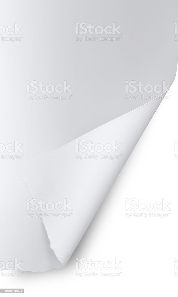 Curled Torn Paper royalty-free stock photo