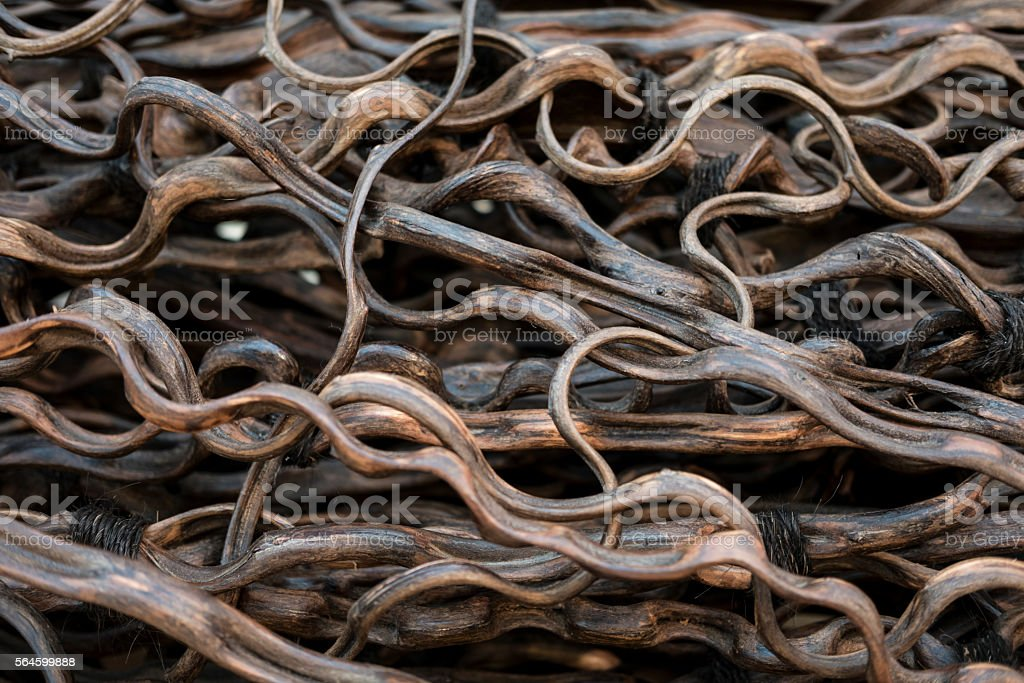 Curly Dry Ivy stock photo