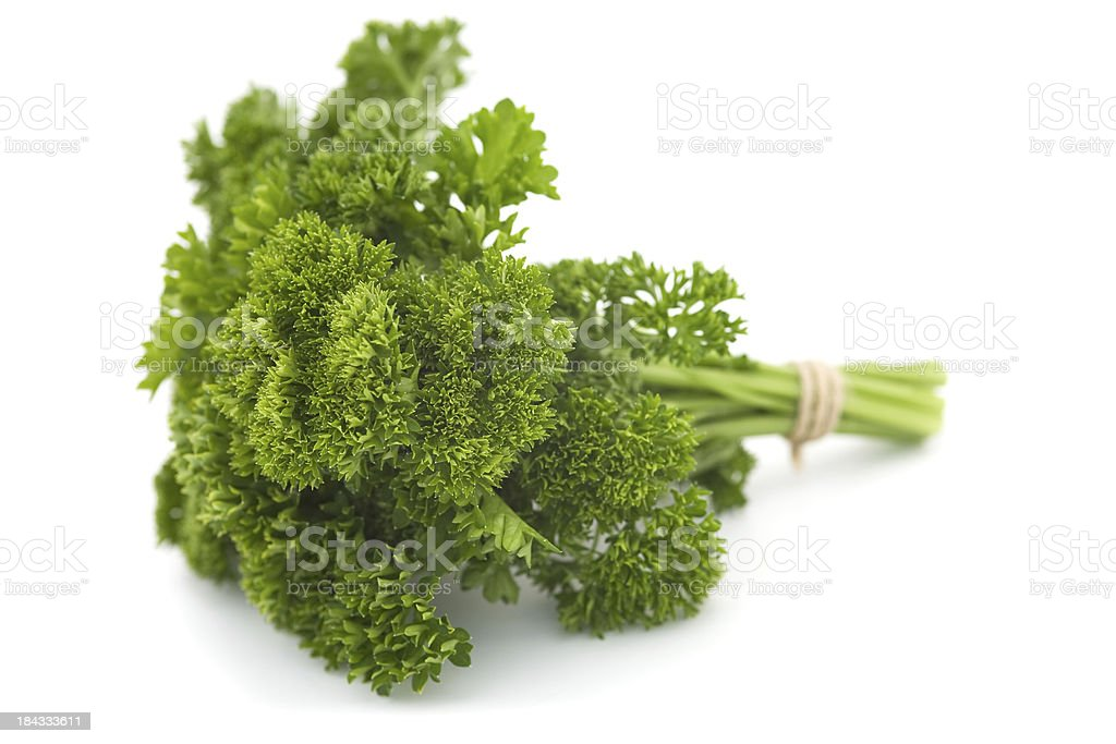 Curly parsley royalty-free stock photo