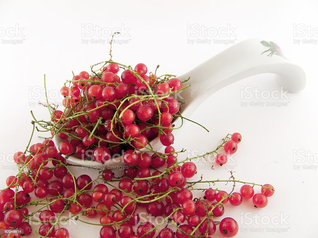 Currant royalty-free stock photo