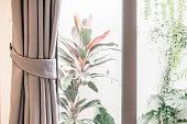 Curtain across a window