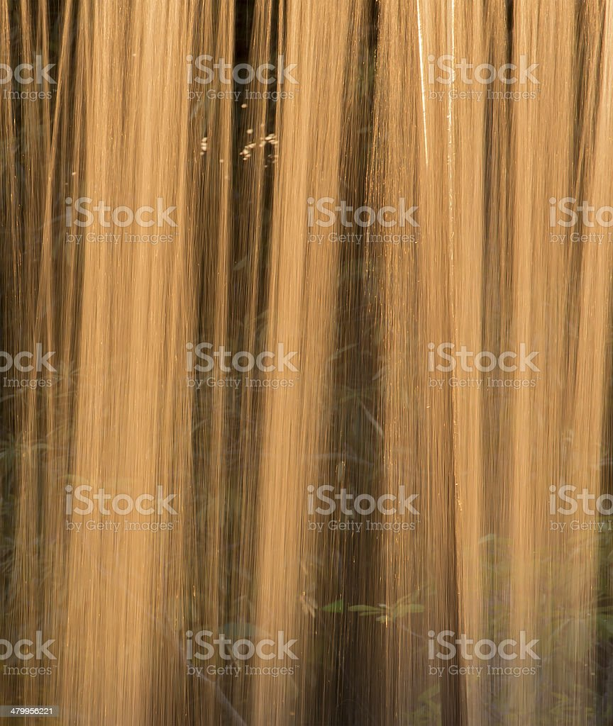 Curtain of pure golden motion stock photo