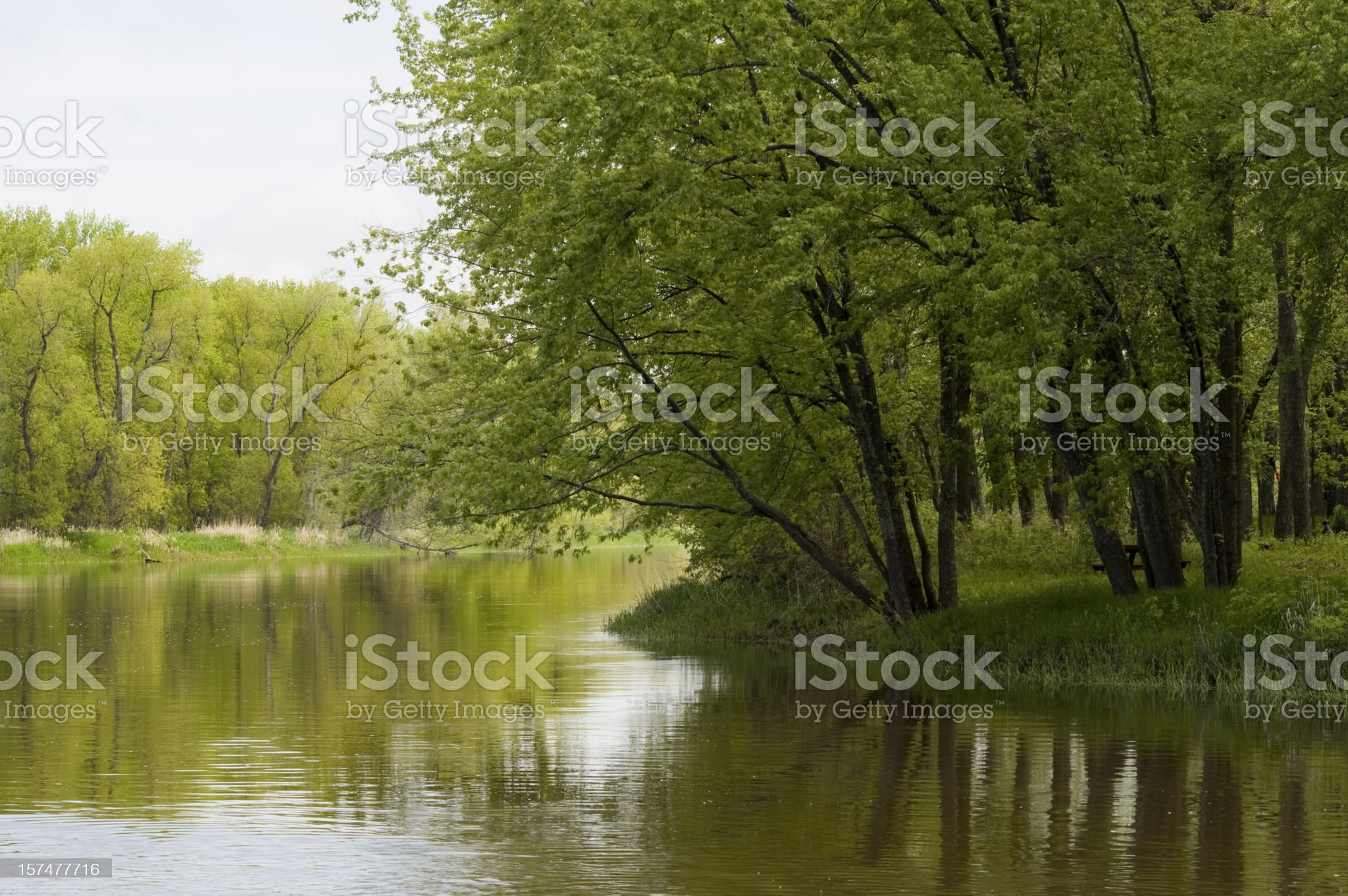 Curve on the Mississippi River royalty-free stock photo