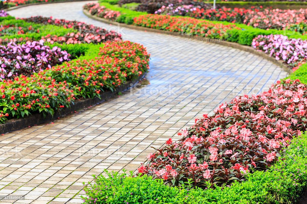 curve route and beautiful flower royalty-free stock photo