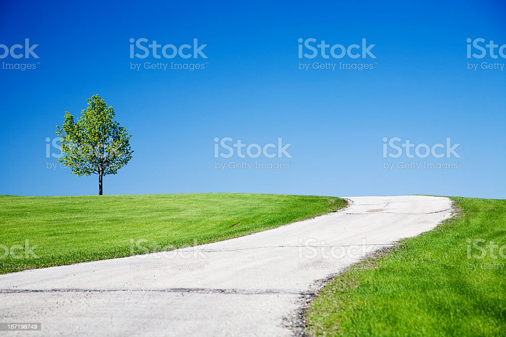 Curved asphalt road amongst green lawn and tree on hill royalty-free stock photo