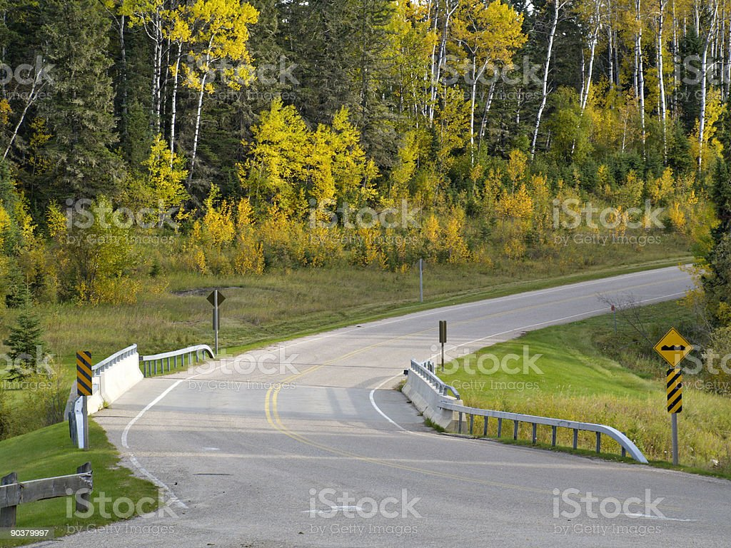 Curved Road and Bridge in Forest royalty-free stock photo