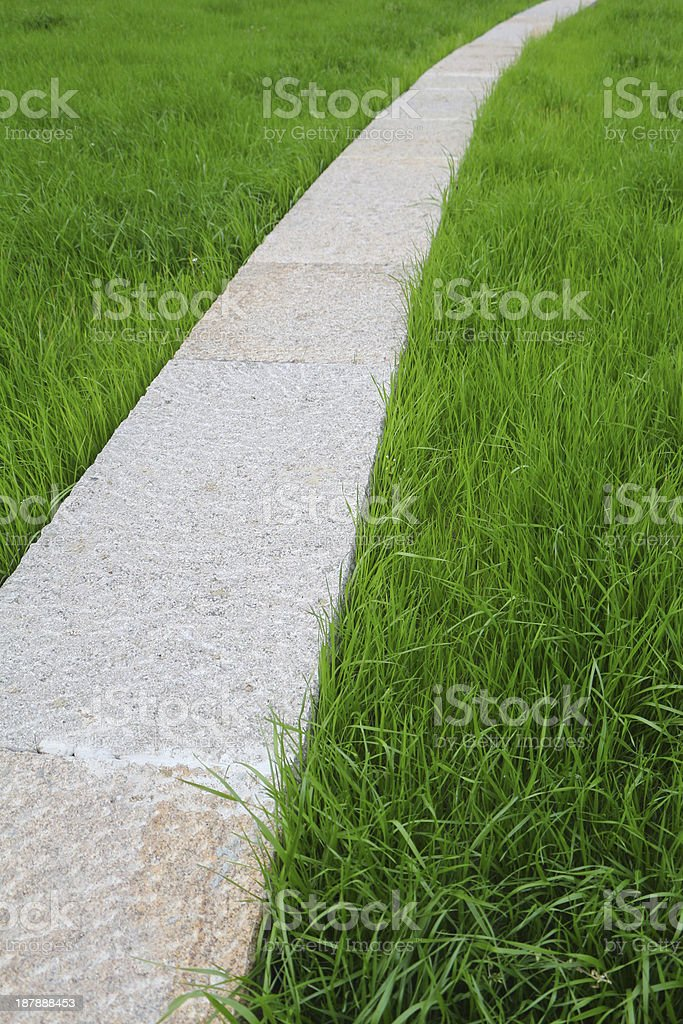 Curved Stone road and lawn royalty-free stock photo