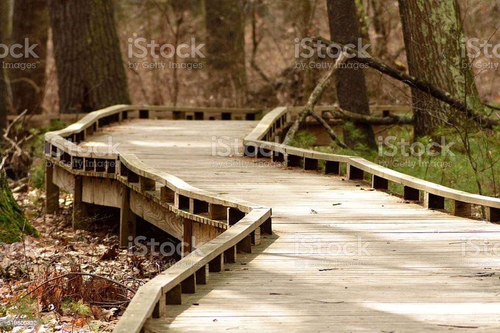 Curved Walkway Through Forest stock photo