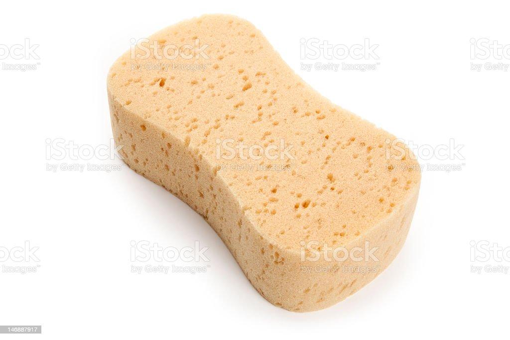 Curved yellow sponge on white studio background stock photo