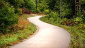 Curving Asphalt Walkway