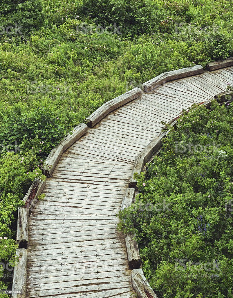 Curving Boardwalk royalty-free stock photo
