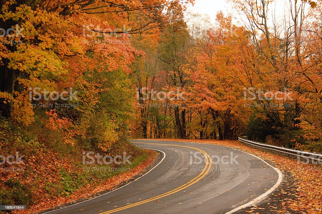 Curving road in fall foilage royalty-free stock photo