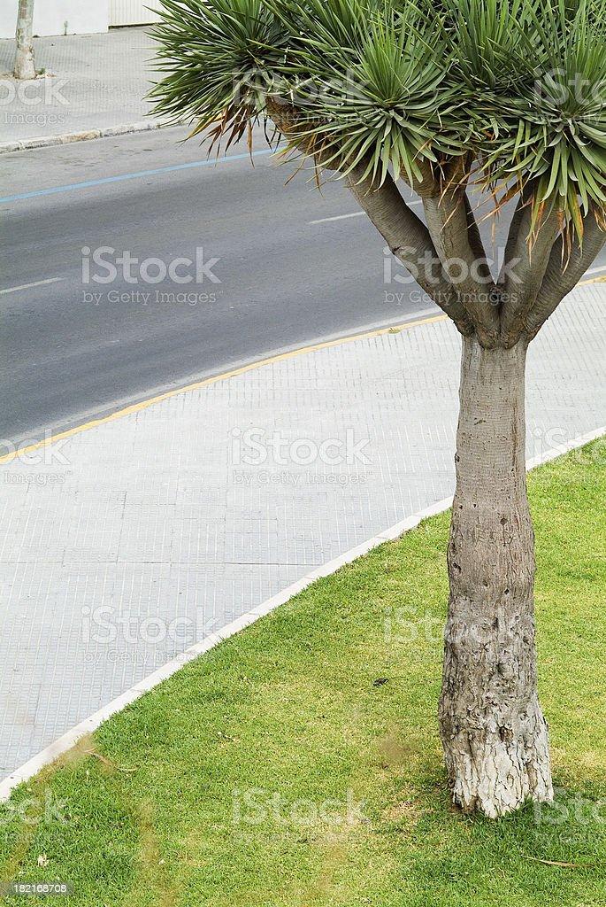 Curving Street stock photo