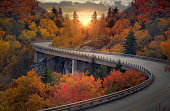 Curvy autumn road