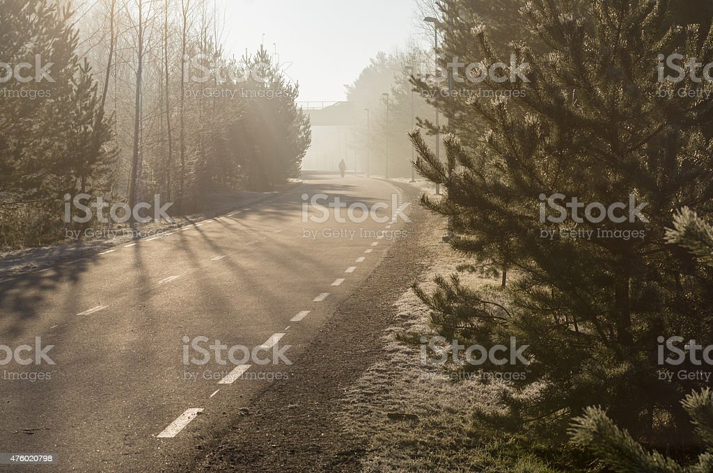 Curvy pedestrian lane with man silhouette on cobweb morning stock photo