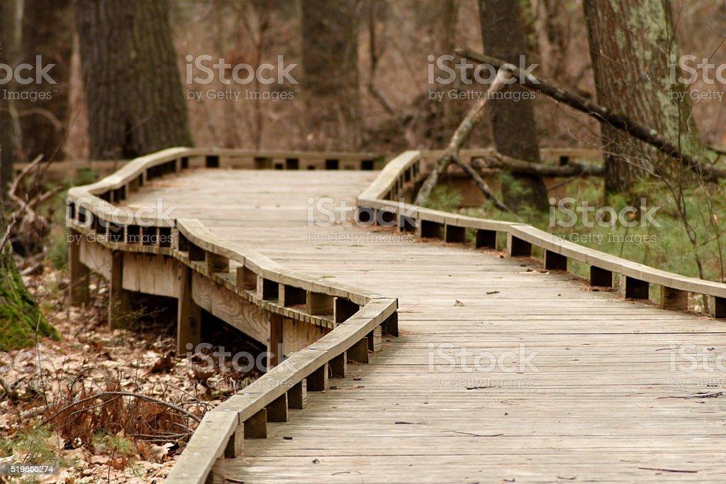 Curvy Raised Platform Protects Marshland stock photo