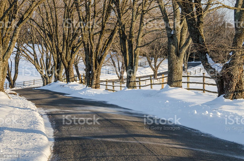 Curvy Road in Winter stock photo