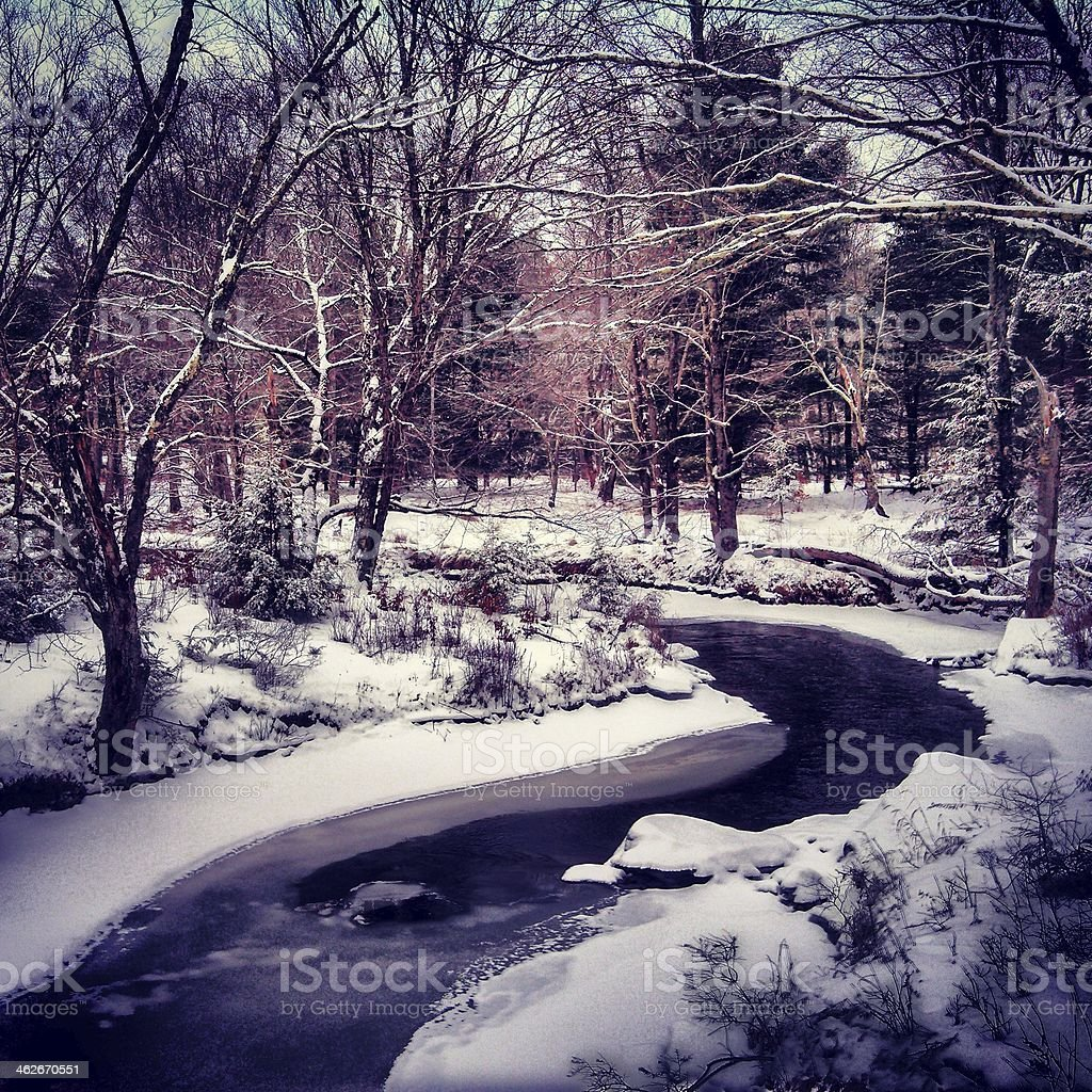 Curvy Winter Stream in the Woods stock photo