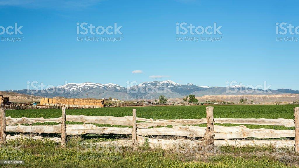 Custom wood fence and snow covered Idaho mountains stock photo