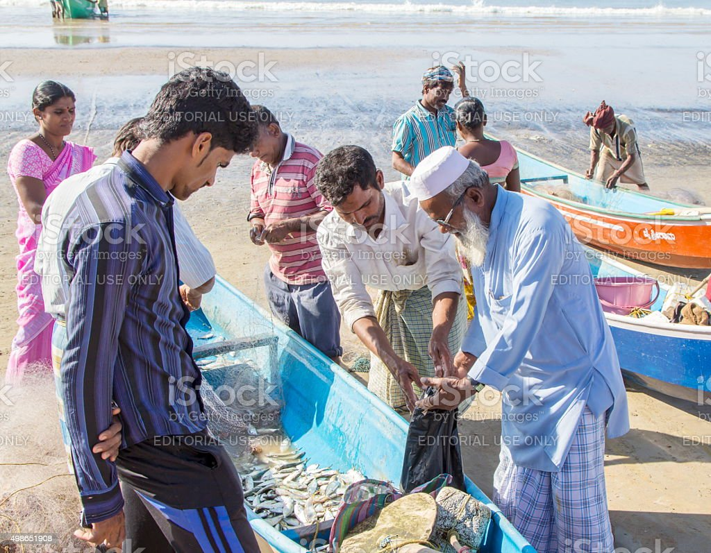 Customer buying fish on beach, Murudeshwar, India stock photo