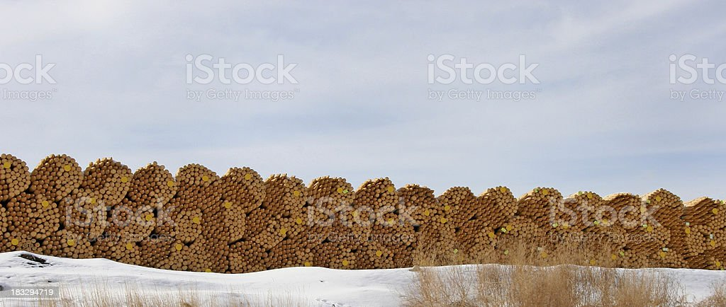 Cut and Stacked Posts At The Sawmill stock photo