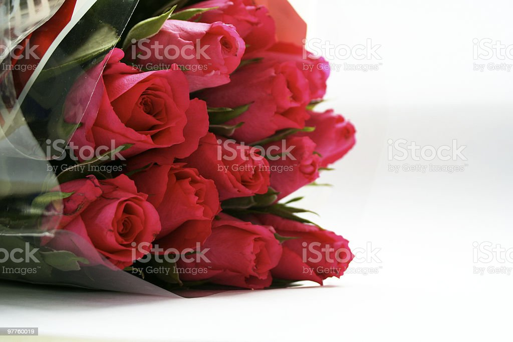 cut flowers royalty-free stock photo
