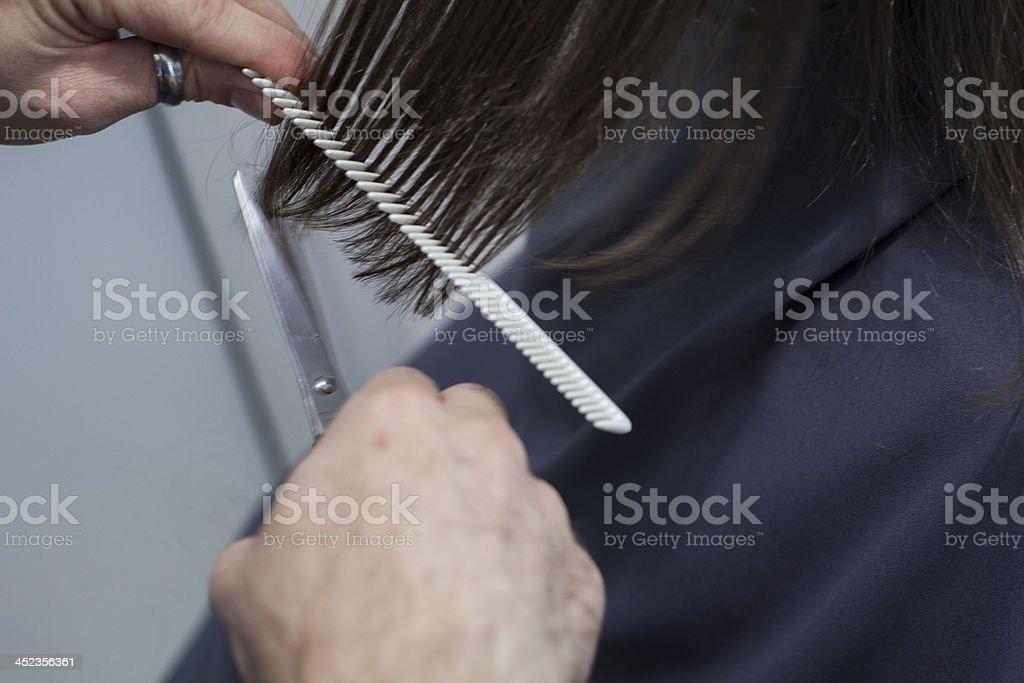 Cut Hair royalty-free stock photo