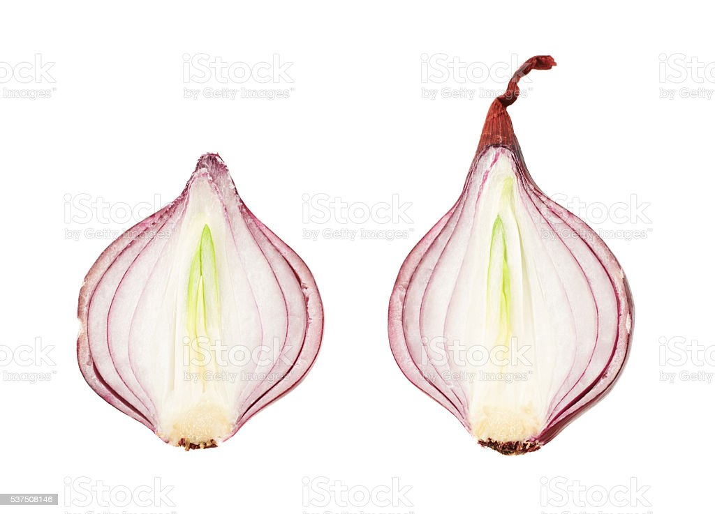 Cut in halves red onion isolated stock photo