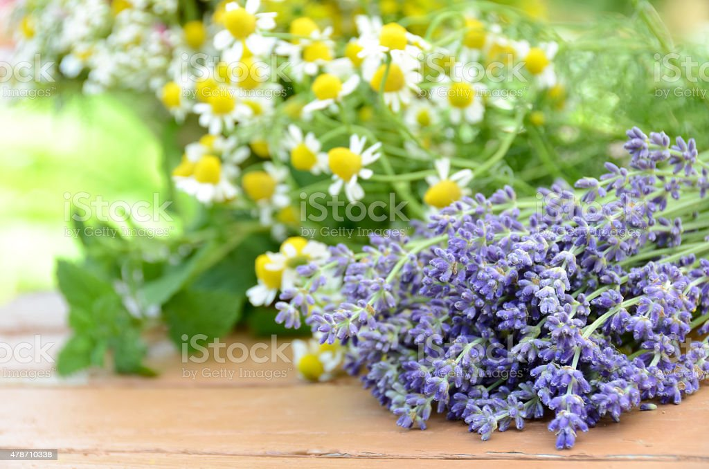 cut lavender and herbal flowers stock photo