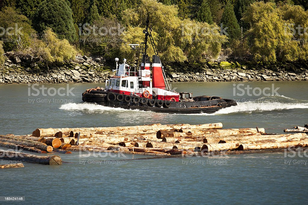 Cut logs on the river royalty-free stock photo