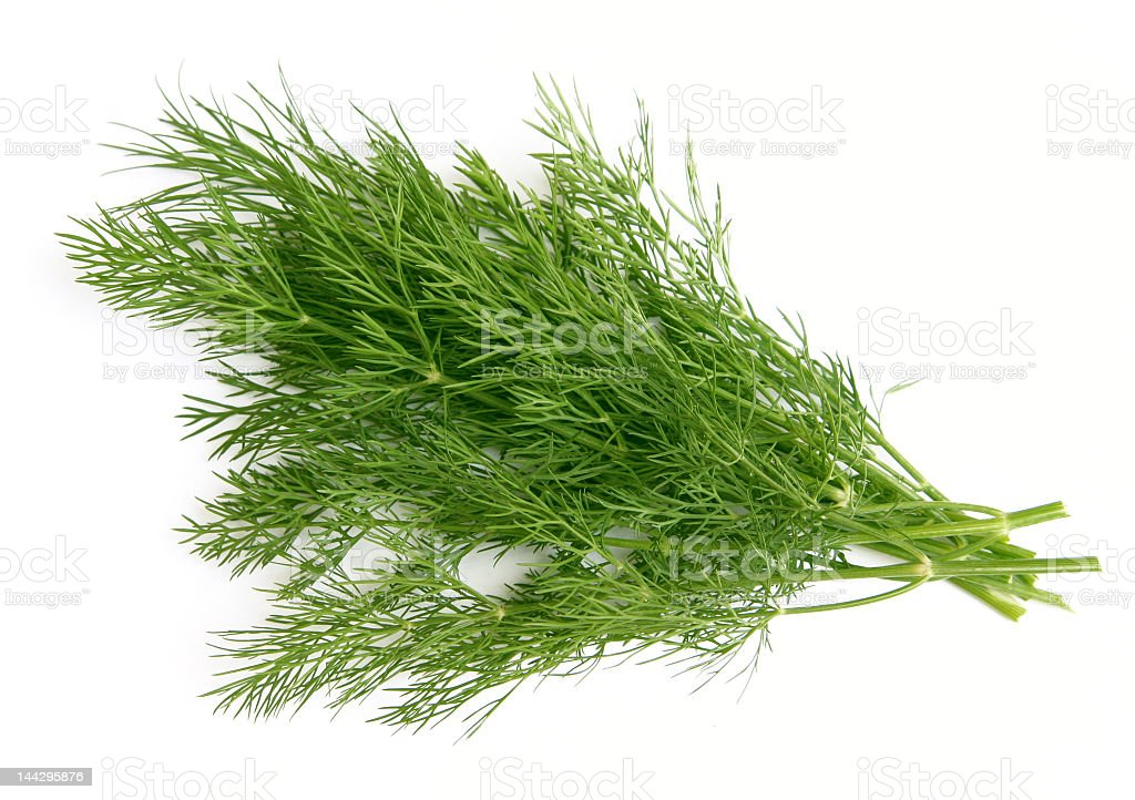 A cut of green dill on a neutral white background stock photo